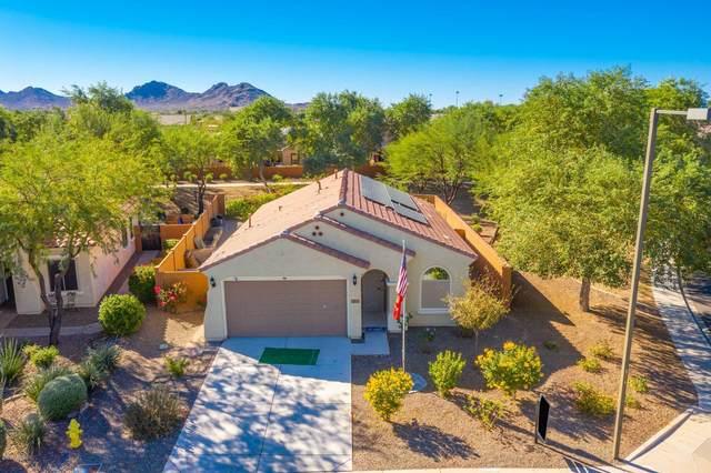 26059 W Tonopah Drive, Buckeye, AZ 85396 (MLS #6154969) :: My Home Group