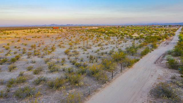 24928 N 243RD Avenue, Wittmann, AZ 85361 (MLS #6154981) :: neXGen Real Estate