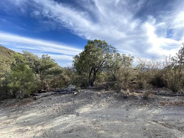 00 E Wild Flower Road, Crown King, AZ 86343 (MLS #6154995) :: Yost Realty Group at RE/MAX Casa Grande