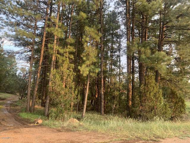 1934 State Route 260, Overgaard, AZ 85933 (MLS #6155135) :: The W Group