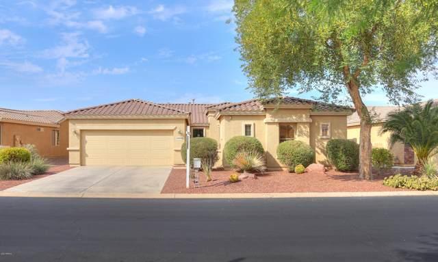 42926 W Morning Dove Lane, Maricopa, AZ 85138 (MLS #6155248) :: The Daniel Montez Real Estate Group