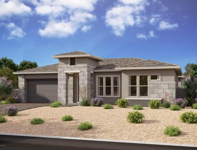 10729 E Talon Avenue, Mesa, AZ 85212 (MLS #6155260) :: TIBBS Realty