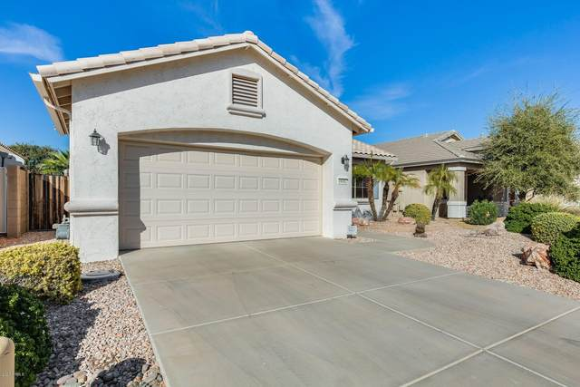 18082 W Weatherby Drive, Surprise, AZ 85374 (MLS #6155262) :: Power Realty Group Model Home Center