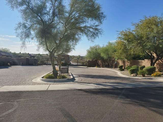 16908 S 31ST Lane, Phoenix, AZ 85045 (#6155575) :: Long Realty Company