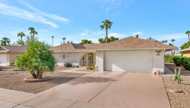 12631 W Paintbrush Drive, Sun City West, AZ 85375 (MLS #6155588) :: NextView Home Professionals, Brokered by eXp Realty