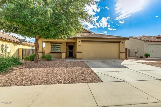 18513 W Bridger Street, Surprise, AZ 85388 (MLS #6155629) :: Brett Tanner Home Selling Team