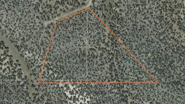 0 Yonder Way, Seligman, AZ 86337 (MLS #6155722) :: Yost Realty Group at RE/MAX Casa Grande