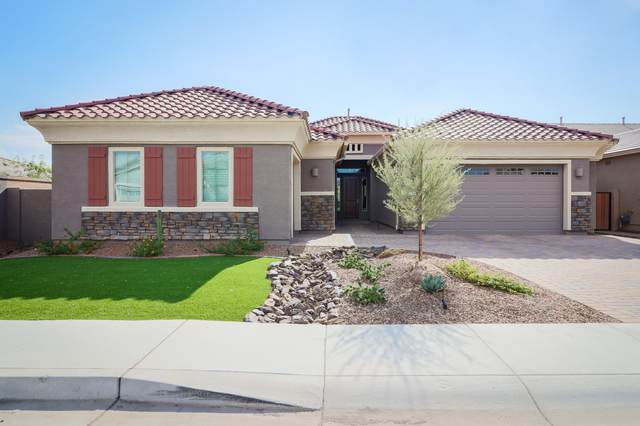 6629 W Roy Rogers Road, Phoenix, AZ 85083 (MLS #6155853) :: Brett Tanner Home Selling Team