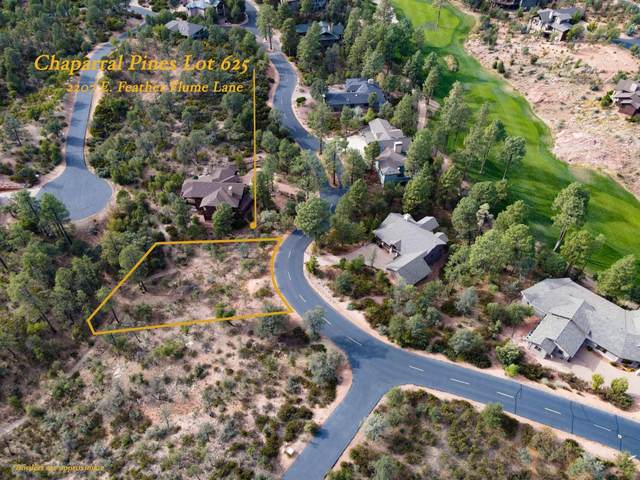 2207 E Feather Plume Lane, Payson, AZ 85541 (MLS #6155861) :: The W Group