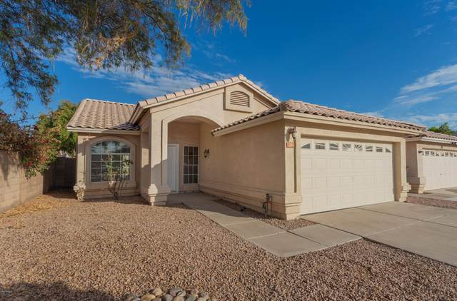 25 N Cholla Street, Gilbert, AZ 85233 (MLS #6155946) :: Lifestyle Partners Team