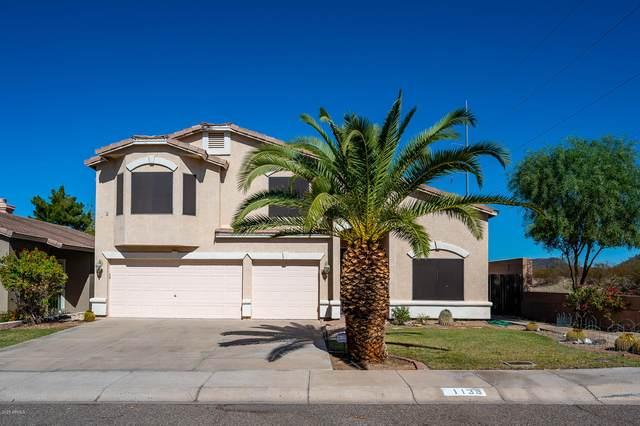 1138 E Irma Lane, Phoenix, AZ 85024 (MLS #6156003) :: Long Realty West Valley