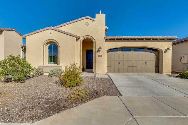 136 E Catalina Lane, San Tan Valley, AZ 85140 (MLS #6156034) :: BVO Luxury Group