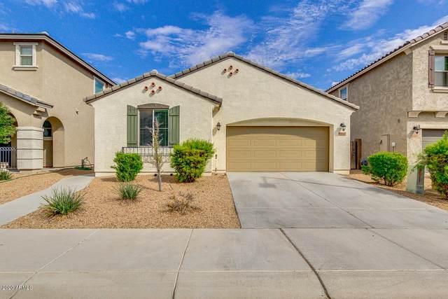 12016 W Desert Sun Lane, Peoria, AZ 85383 (MLS #6156118) :: CANAM Realty Group