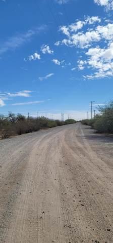 3950 N Emerald Street, Eloy, AZ 85131 (#6156127) :: Long Realty Company