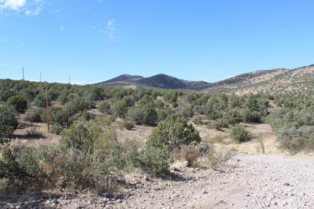 4249 W Cedar Heights Road, Chino Valley, AZ 86305 (MLS #6156190) :: Kepple Real Estate Group
