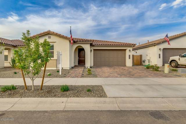 20864 E Timberline Road, Queen Creek, AZ 85142 (MLS #6156238) :: The Riddle Group