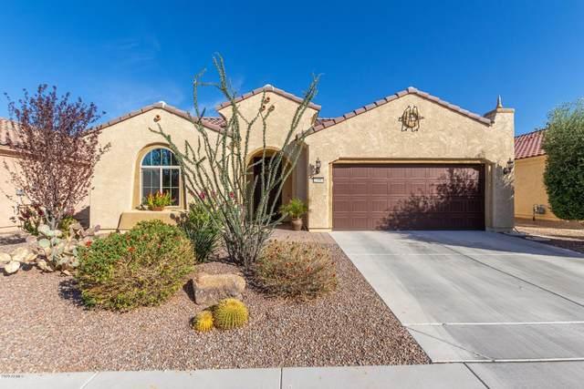 21883 N 263RD Drive, Buckeye, AZ 85396 (MLS #6156241) :: Long Realty West Valley