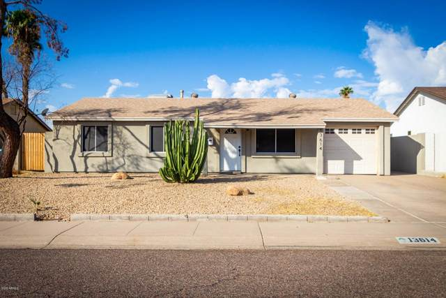 13614 N 38TH Place, Phoenix, AZ 85032 (MLS #6156310) :: Budwig Team | Realty ONE Group