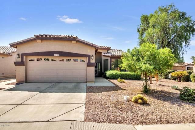 4683 E Nightingale Lane, Gilbert, AZ 85298 (MLS #6156327) :: Arizona Home Group