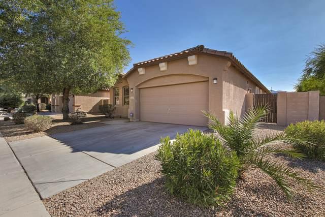2625 W Beautiful Lane, Phoenix, AZ 85041 (MLS #6156359) :: Arizona Home Group