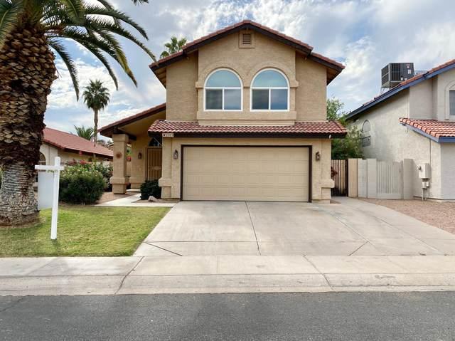 2395 W Orchid Lane, Chandler, AZ 85224 (MLS #6156508) :: John Hogen | Realty ONE Group