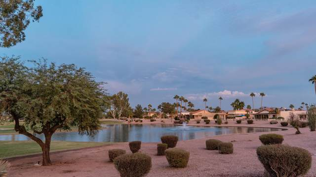 25647 S Howard Drive, Sun Lakes, AZ 85248 (MLS #6156520) :: The Riddle Group
