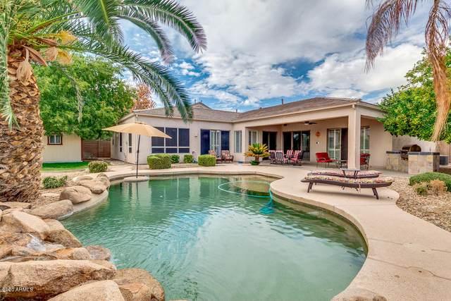 2223 E Winged Foot Drive, Chandler, AZ 85249 (MLS #6156623) :: Midland Real Estate Alliance