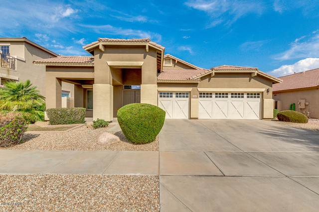 13816 W Gelding Drive, Surprise, AZ 85379 (MLS #6156692) :: The Daniel Montez Real Estate Group
