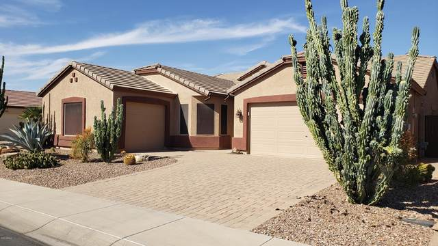 43222 W Neely Drive, Maricopa, AZ 85138 (MLS #6156845) :: Arizona Home Group