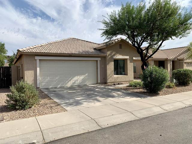 2521 S 111TH Drive, Avondale, AZ 85323 (MLS #6156852) :: The Daniel Montez Real Estate Group