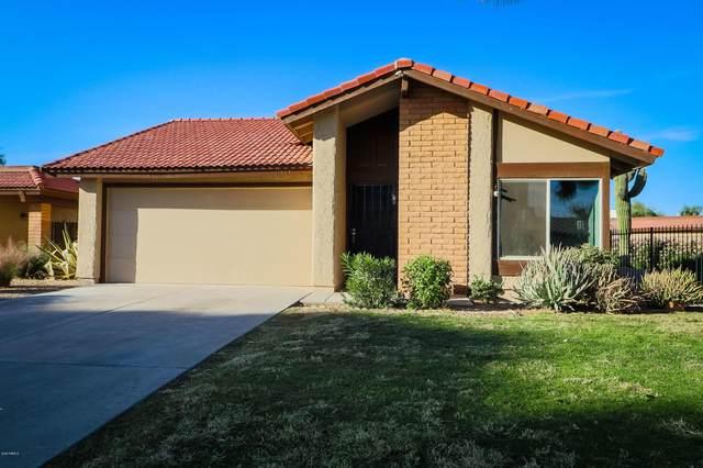 11434 S Maze Court, Phoenix, AZ 85044 (MLS #6157007) :: The Kurek Group