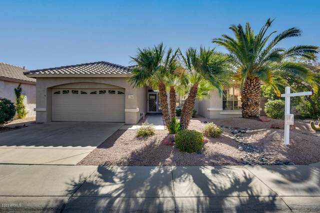 17683 W Buena Vista Drive, Surprise, AZ 85374 (MLS #6157036) :: Klaus Team Real Estate Solutions