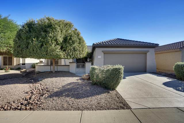 15031 W Woodridge Drive, Surprise, AZ 85374 (MLS #6157047) :: My Home Group