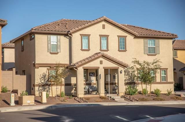 1291 N 162ND Avenue, Goodyear, AZ 85338 (MLS #6157290) :: John Hogen | Realty ONE Group