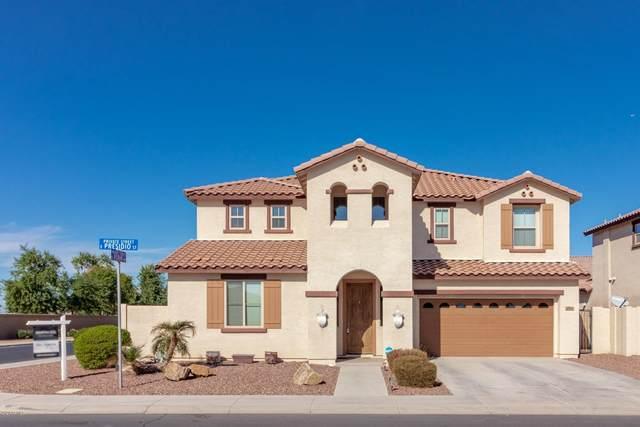 2812 E Presidio Street, Mesa, AZ 85213 (MLS #6157343) :: The Property Partners at eXp Realty