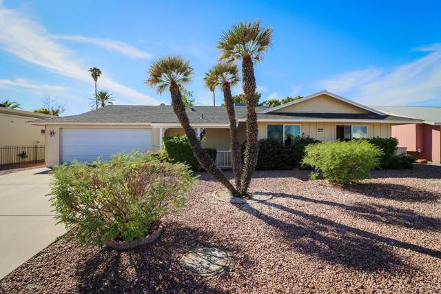 10232 N 109TH Avenue, Sun City, AZ 85351 (MLS #6157422) :: Lifestyle Partners Team