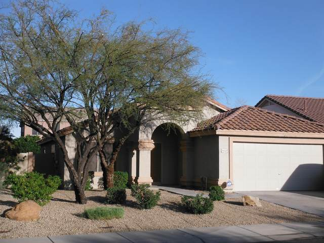 26235 N 41ST Way, Phoenix, AZ 85050 (MLS #6157607) :: TIBBS Realty