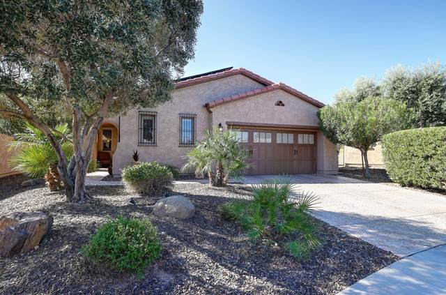 28888 N 127TH Avenue, Peoria, AZ 85383 (MLS #6157626) :: Long Realty West Valley