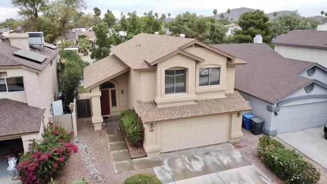 738 E Rosemonte Drive --->, Phoenix, AZ 85024 (MLS #6157638) :: BVO Luxury Group