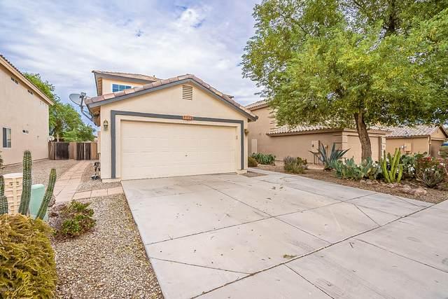 1128 E Stardust Way, San Tan Valley, AZ 85143 (MLS #6157689) :: Power Realty Group Model Home Center