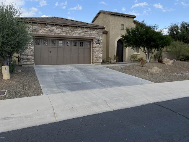 12536 W Jasmine Trail, Peoria, AZ 85383 (MLS #6157899) :: Long Realty West Valley