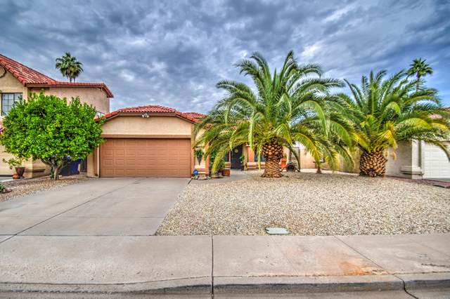 5260 E Glencove Circle, Mesa, AZ 85205 (MLS #6157940) :: The Riddle Group