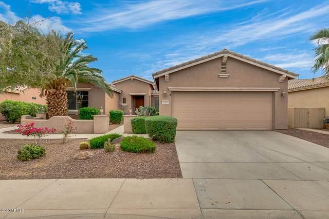 42965 W Magic Moment Drive, Maricopa, AZ 85138 (MLS #6158000) :: Brett Tanner Home Selling Team