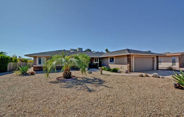 10629 W Mimosa Drive, Sun City, AZ 85373 (MLS #6158161) :: NextView Home Professionals, Brokered by eXp Realty