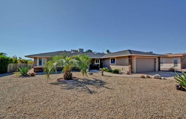 10629 W Mimosa Drive, Sun City, AZ 85373 (MLS #6158161) :: Long Realty West Valley
