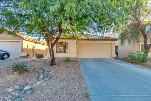 493 E Penny Lane, San Tan Valley, AZ 85140 (MLS #6158238) :: Homehelper Consultants