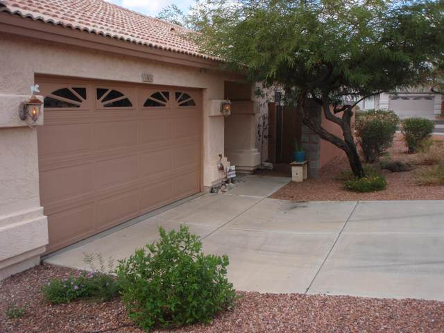16654 N 19TH Place, Phoenix, AZ 85022 (MLS #6158281) :: The Daniel Montez Real Estate Group