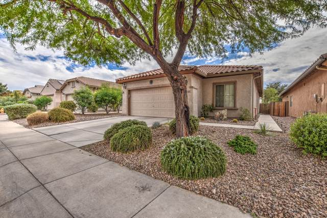 7293 W Pleasant Oak Way, Florence, AZ 85132 (MLS #6158420) :: Homehelper Consultants