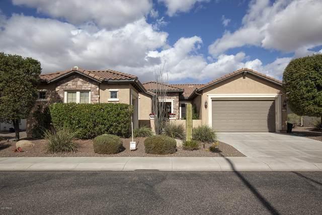 26306 W Tonopah Drive, Buckeye, AZ 85396 (MLS #6158488) :: Long Realty West Valley