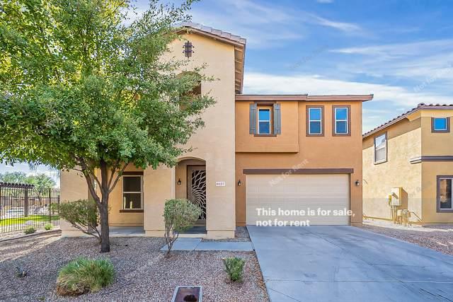 6407 W Ruth Avenue, Glendale, AZ 85302 (MLS #6158490) :: BVO Luxury Group